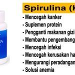 Manfaat Spirulina dalam Paket Smart Detox Nutritional Snack