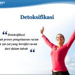 Stockist Smart Detox Jakarta Barat, Penyedia Produk Asli Synergy