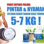 Turun Berat Badan dengan Smart Detox