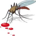 Demam Berdarah dan Cara Mengatasinya